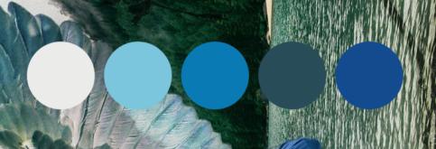 Color scheme for album design