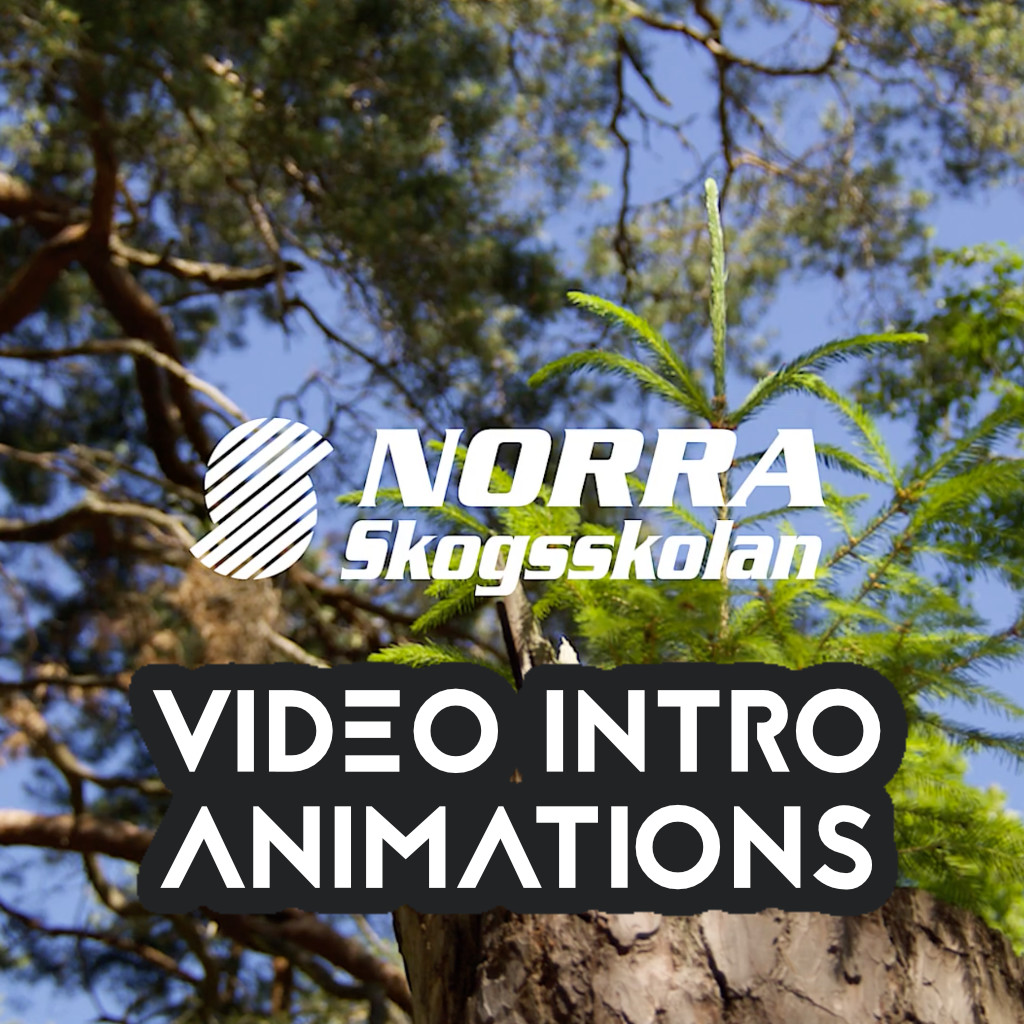 Norra - Video intro animation and sound post mortem