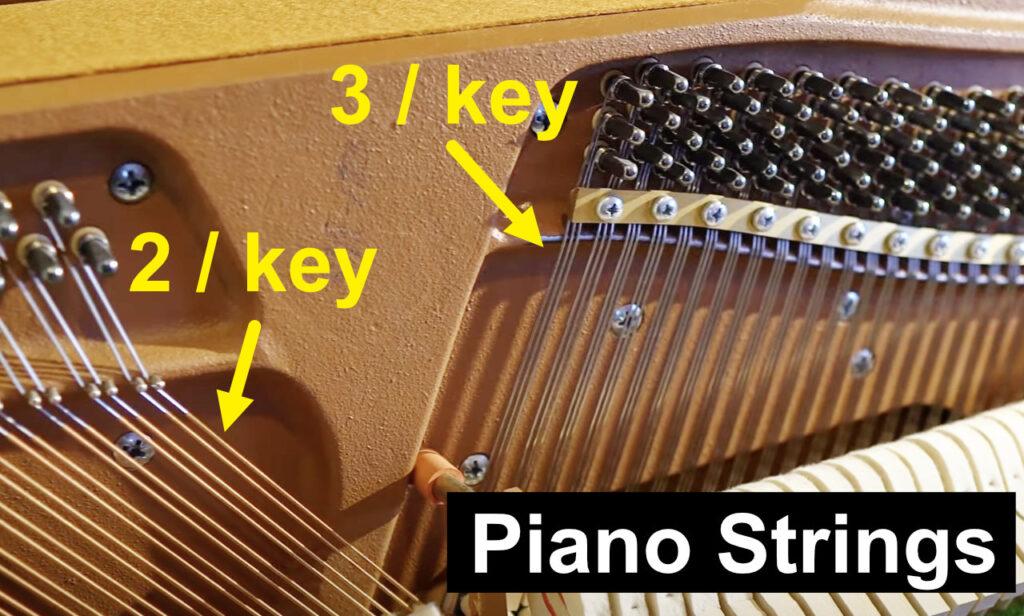 piano-strings-per-key